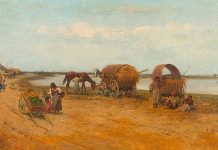 Болестите на ромския етнос - Иво Койчев